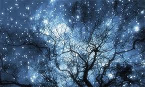 winter-solstice-longest-night