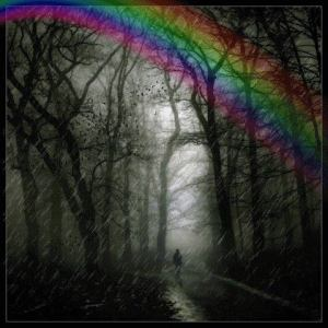 forest and rainbow