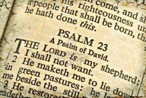 psalm 23 bible