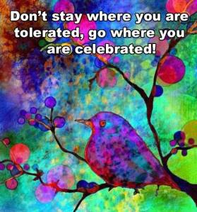 go where you're celebrated