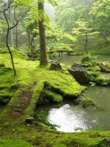 Ireland - Bridges Park
