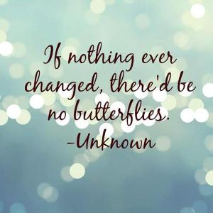 if nothing ever changed, no butterflies
