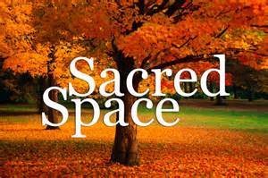 sacred space - autumn tree