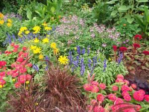 Chicago Botanic Garden - credit Kevin Jones