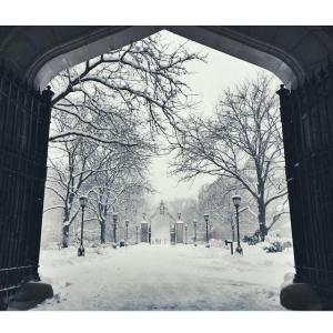 University of Chicago snowgram, 2-1-15