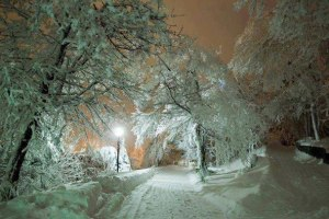 winter road at night