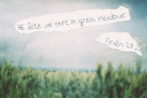 rest in green meadows Psalm 23