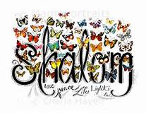 shalom butterflies light love