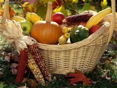 autumn-harvest-basket