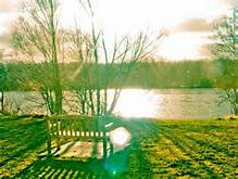 bench-sun-mindfulness