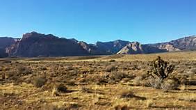 desert landscape 1