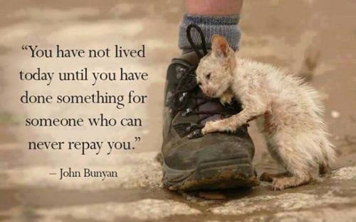 SERVE do something for those who can't repay