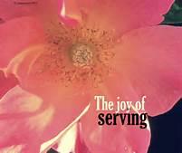 serve, joy of