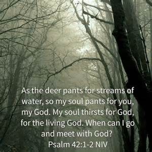 Psa 42 deer, soul