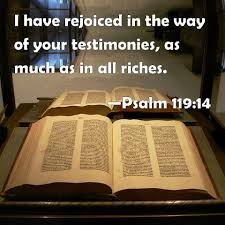 Psa 119-14 God's statutes, bible